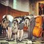 14 juin 2013 - Festival TROC'MUSIC